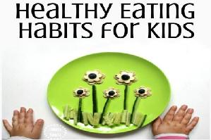 best online diet plan