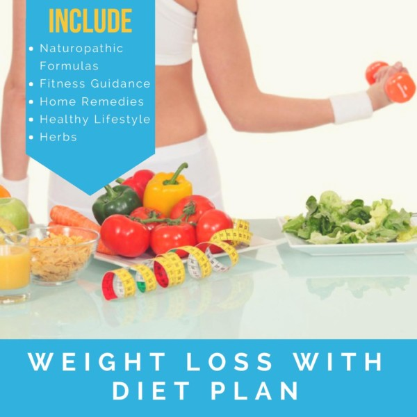 best online diet program