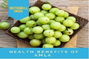 amla benefits of amla